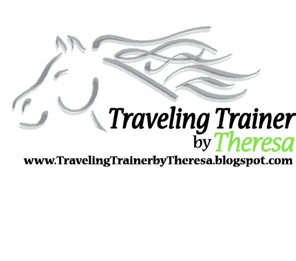 Traveling Trainer by Theresa