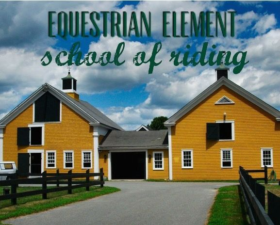 Equestrian Element riding lessons in Plymouth