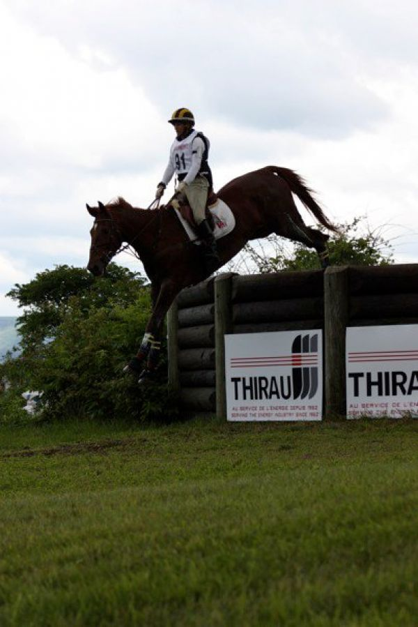 Yellow Rose Eventing