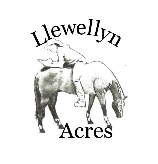 Llewellyn Acres