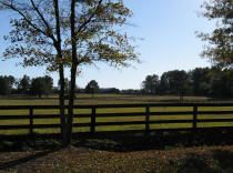 G & I Broodmare Farm, Inc