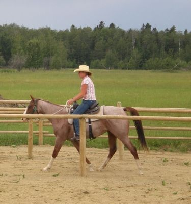 Cornerstone Natural Horsemanship