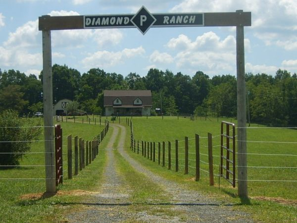 DIAMOND P RANCH
