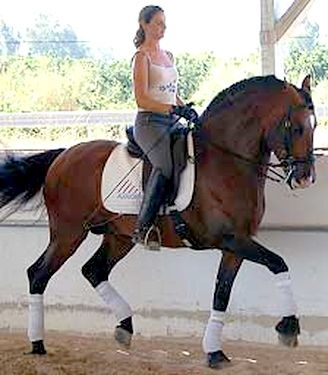 Rolling River Classical Dressage