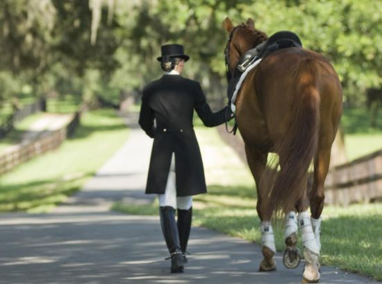 Ocala Dressage Center