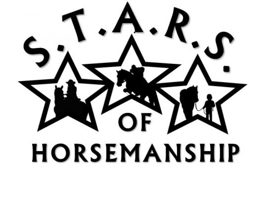 S.T.A.R.S. of Horsemanship Riding Lessons Leasing