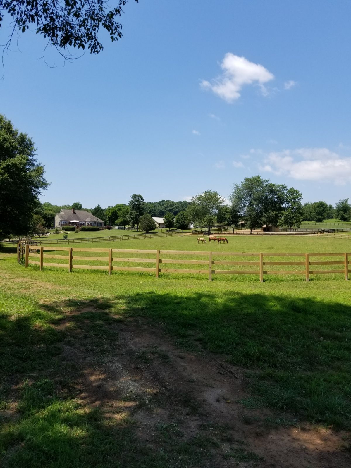 Breezy Hill Farm